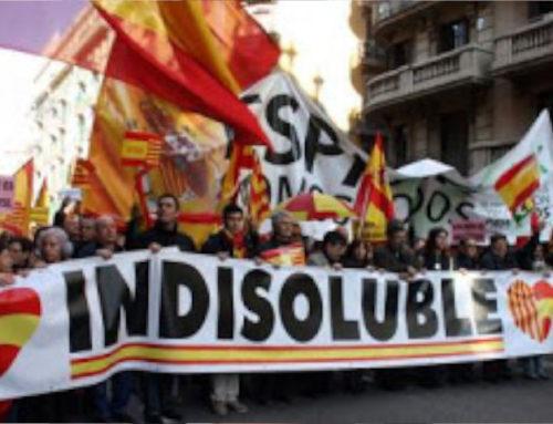¿Cómo se define Movimiento Cívico Espanya i Catalans por todos los españoles que se reúnen en sus actos?