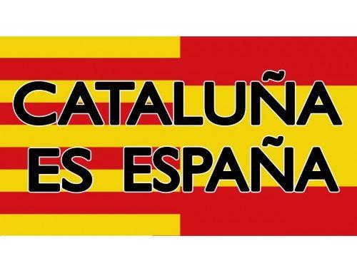 Manifestación en Barcelona – Domingo 17 de Febrero en la Plaza Urquinaona a las 11.30h para decir bien alto Por una España Unidad, ELECCIONES YA¡¡¡