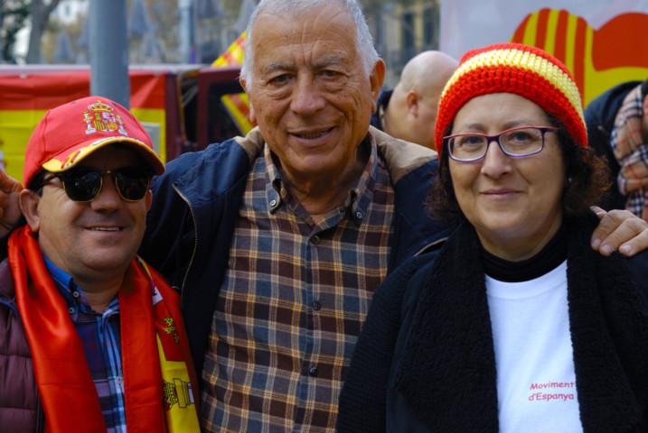 voluntarios dia de la constitucion