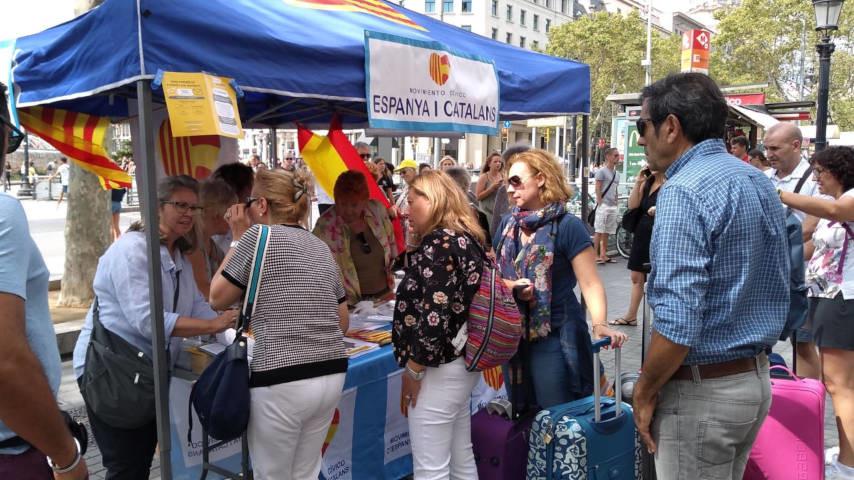 carpas espanya i catalans